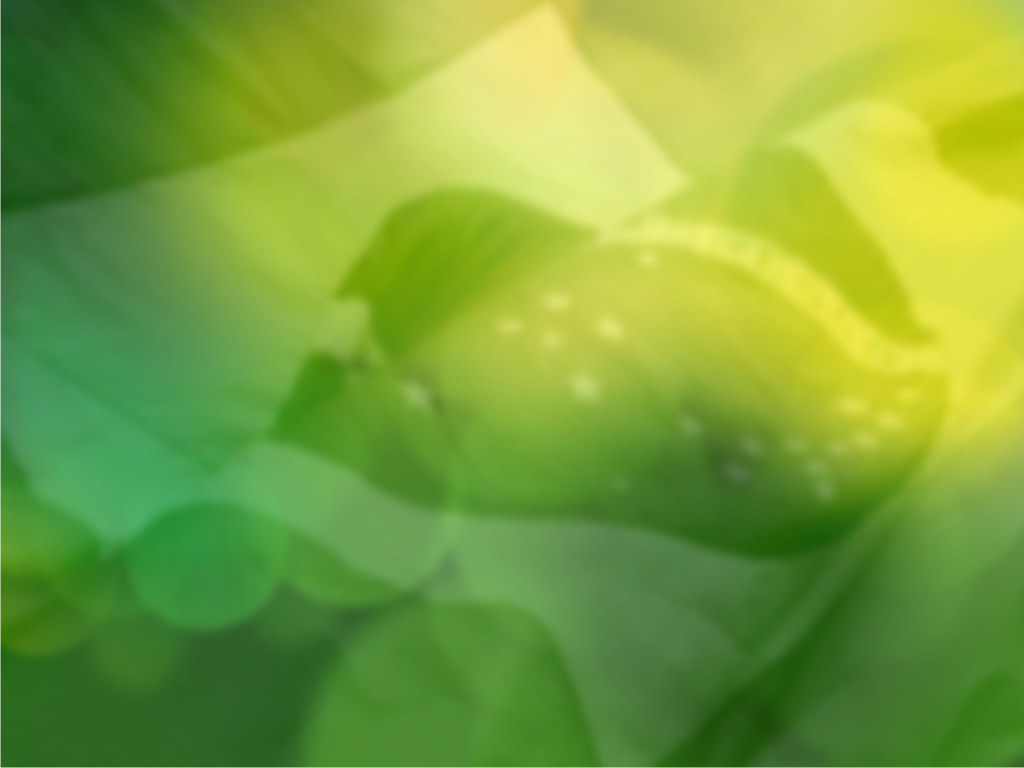 le-kdm-theme/pacote/usr/share/kde4/apps/kdm/themes/le/background.png
